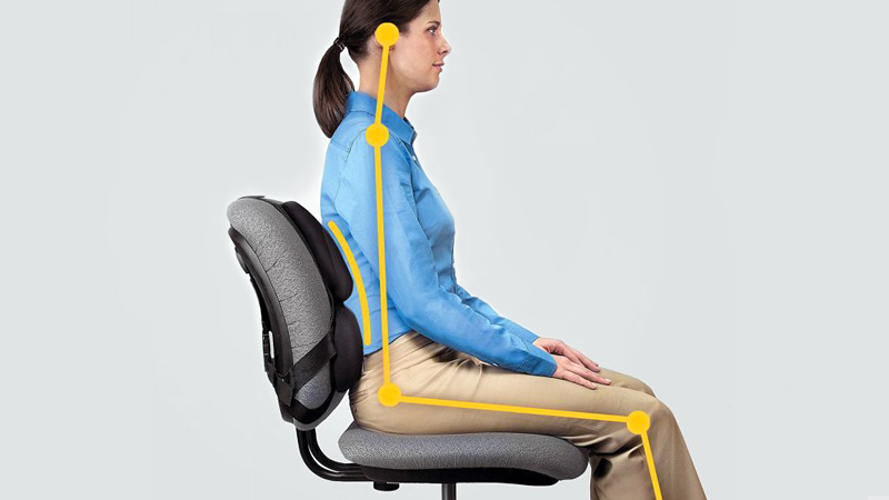 6 Best Back Support For Office Chairs